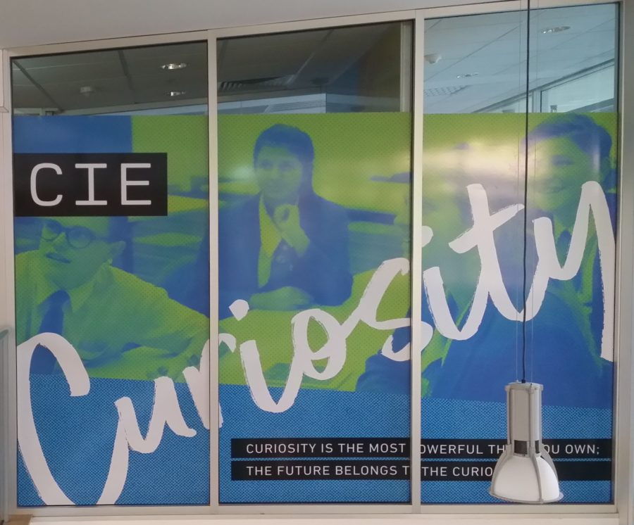 school Windows and wall graphics – bald hills north brisbane